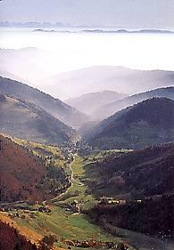Informationen über Landschaften im Schwarzwald